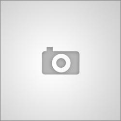Jeux de la Francophonie - Littérature: Mohamed Mbougar Sarr remporte la médaille de bronze